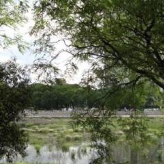 Reserva Ecologica User Photo