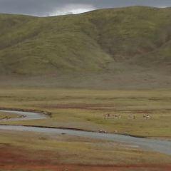 Qinghaisheng Sanjiang Yuanma Duo National Park User Photo
