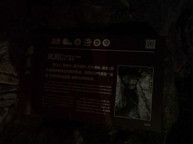 링펑 야경
