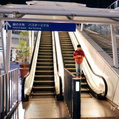 Oasis 21 User Photo