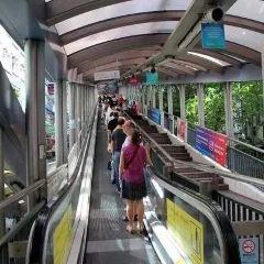 中環至半山自動扶梯用戶圖片