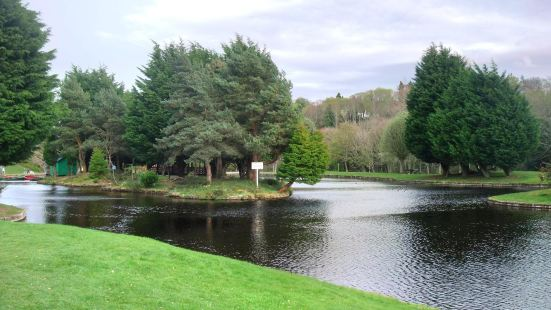 Whin Park