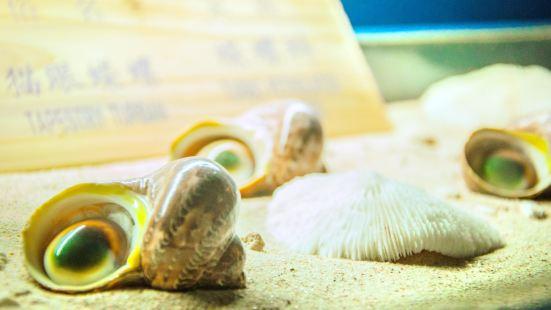 Yalong Bay Shell Museum