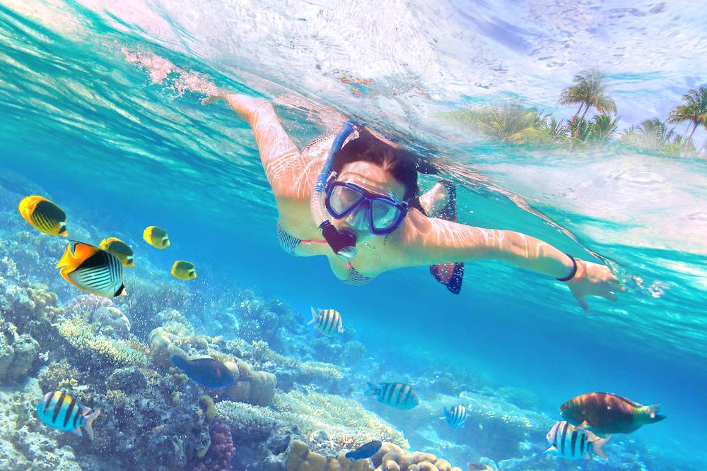石螺口海ダイビング体験