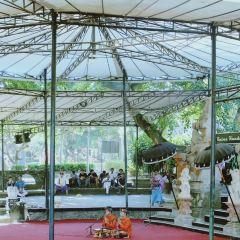 Taman Wedhi Budaya User Photo
