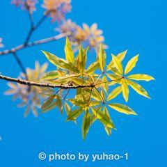 Jianying Park (Northwest Gate) User Photo