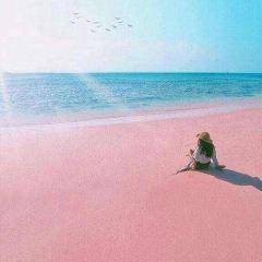 Pink Sand Beach User Photo