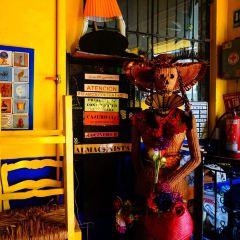 克雷塔羅藝術博物館用戶圖片