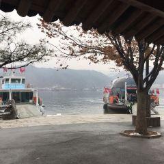 Nami Island User Photo