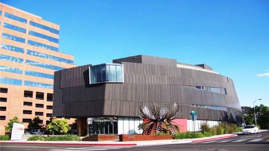南內華達州藝術博物館