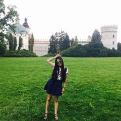 Kazimierzowski Castle User Photo