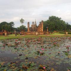 왓 마하탓 여행 사진