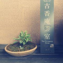 Hosomi Museum User Photo