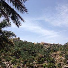 Misfat al Abriyyin User Photo
