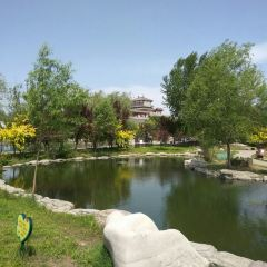 Dongzi Garden Scenic Area User Photo