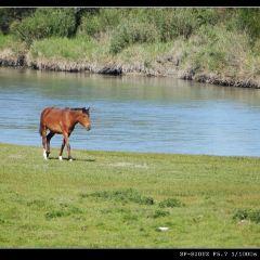 特克斯河用戶圖片