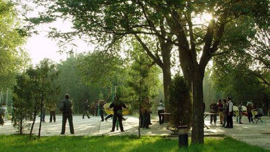 史家埭街心公園