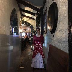Bocaito Spanish Cuisine User Photo