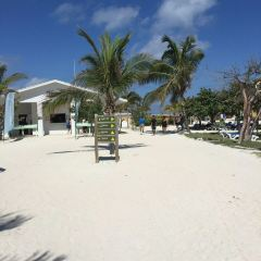 Cabbage Beach User Photo