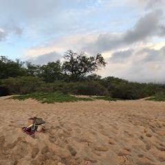 Kamaole Beach Park III 여행 사진
