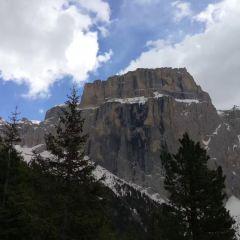 Stelvio National Park用戶圖片