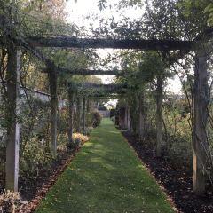 Southsea Rose Garden用戶圖片