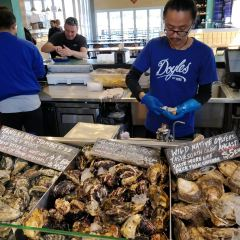悉尼魚市用戶圖片