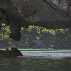 Cat Ba National Park User Photo