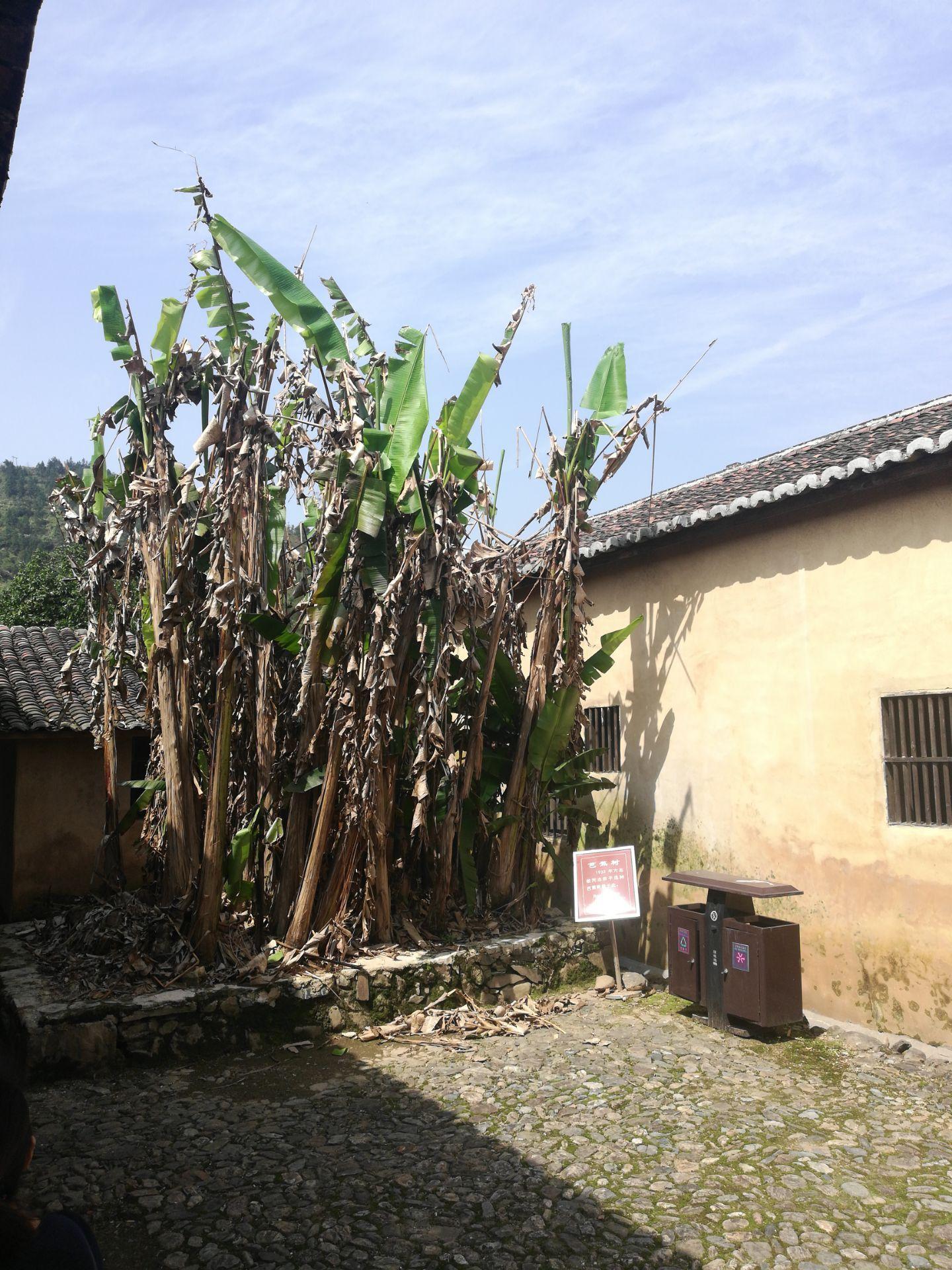 Minzhe Wangan Revolution Base Area Memorial Hall