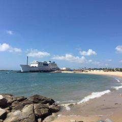 Shishi Gold Coast User Photo