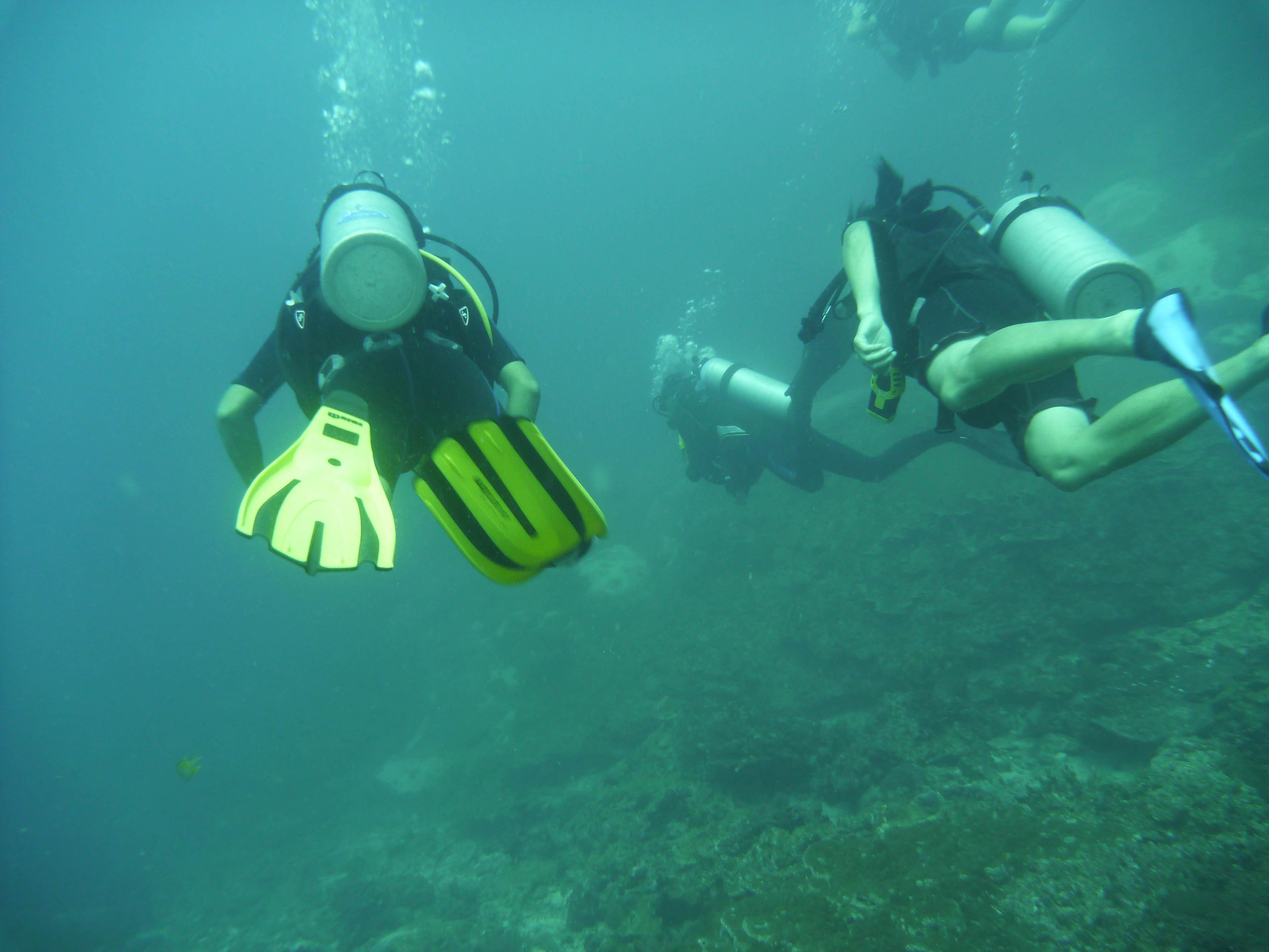 Similan Seven Sea Club