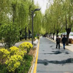 Jiangxindao Park User Photo