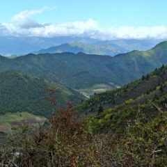 Beishan National Forest Park Langshidang Center Scenic Area User Photo
