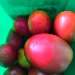 水果園用戶圖片