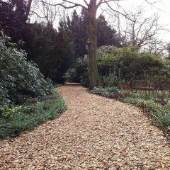 Sheffield Winter Garden 여행 사진