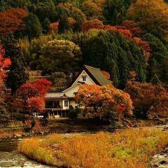 香嵐溪用戶圖片