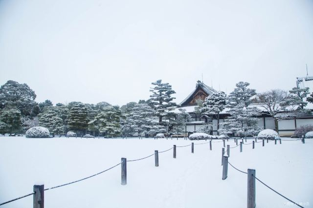 Nijo Castle: Complete guide to Nijo Castle Kyoto 2020
