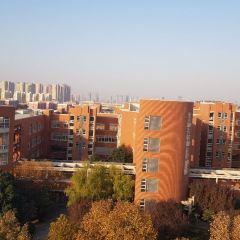 정저우 대학교 여행 사진