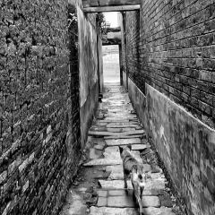 渼陂古村用戶圖片