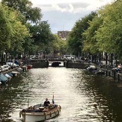 辛格運河用戶圖片