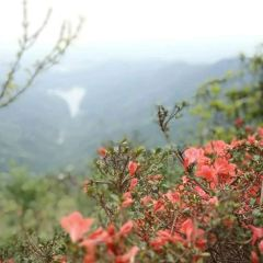 Reaching Sky Candle Mountain User Photo