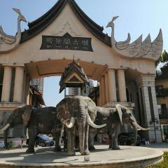 Thailand Street User Photo