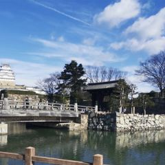 Sosha Gate User Photo