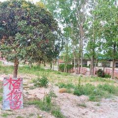 Shannanzhenxi Botanical Garden User Photo