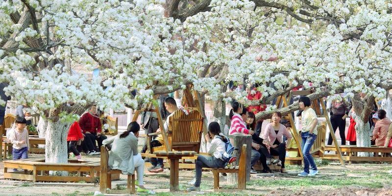 Tianfo Tourist Area