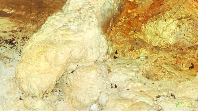 里約熱內盧佳美洞公園 (Parque de las Cavernas del Rio Camuy)