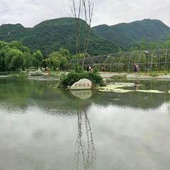 小魚洞國際露營公園用戶圖片