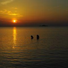 小停泊島用戶圖片