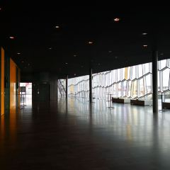 Harpa User Photo