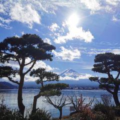 河口湖用戶圖片